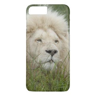 L'Afrique du Sud, Londres est, Inkwenkwezi privé Coque iPhone 7 Plus