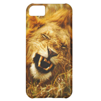 L'Afrique, Kenya, Maasai Mara. Lion masculin. Coque iPhone 5C