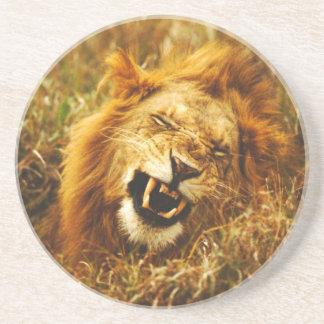 L'Afrique, Kenya, Maasai Mara. Lion masculin. Dessous De Verres
