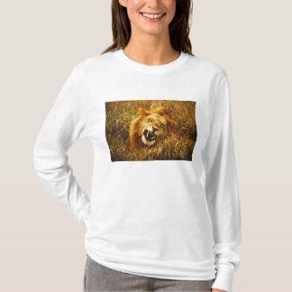 L'Afrique, Kenya, Maasai Mara. Lion masculin. T-shirt