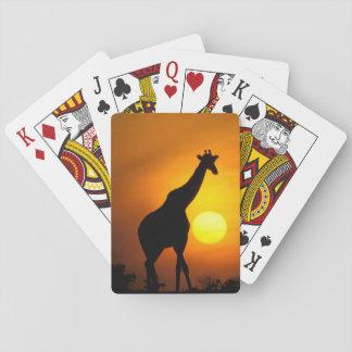 L'Afrique, Kenya, masai Mara. Girafe (girafe Cartes À Jouer
