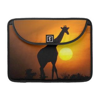 L'Afrique, Kenya, masai Mara. Girafe (girafe Poches Pour Macbook
