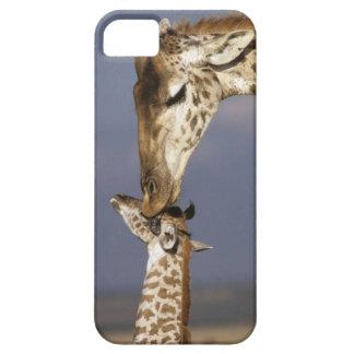 L'Afrique, Kenya, masai Mara. Girafes (girafe Coques iPhone 5