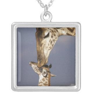 L'Afrique, Kenya, masai Mara. Girafes (girafe Pendentif Carré