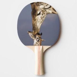 L'Afrique, Kenya, masai Mara. Girafes (girafe Raquette Tennis De Table