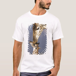 L'Afrique, Kenya, masai Mara. Girafes (girafe T-shirt
