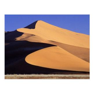 L'Afrique, la Namibie, le Sesriem et le Sossusvlei Carte Postale
