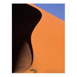 L'Afrique, Namibie, même la lumière sur des dunes, Carte Postale