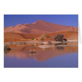 L'Afrique, Namibie. Parc de Namib-Naukluft. 2 Carte De Vœux