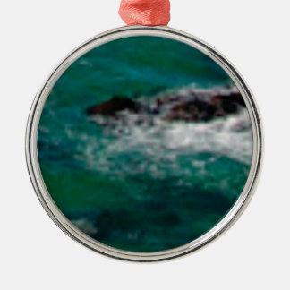 lagune avec des roches ornement rond argenté