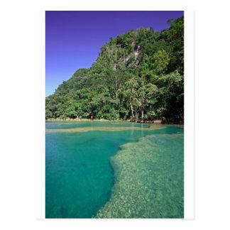 Lagune verte Semuc Champey Guatemala de paradis Carte Postale