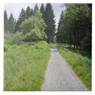 L'Allemagne, Thuringe, chemin dans la forêt Grand Carreau Carré