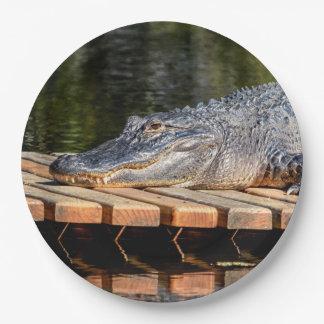 L'alligator chez Homosassa jaillit parc d'état de Assiettes En Papier