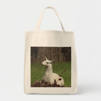 Lama blanc sac de toile
