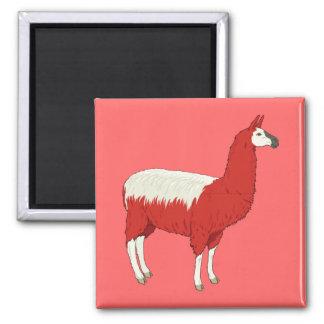 Lama rouge drôle aimant