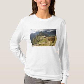 Lamas et un regard fini de Machu Picchu, T-shirt