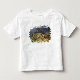 Lamas et un regard fini de Machu Picchu, T-shirt Pour Les Tous Petits