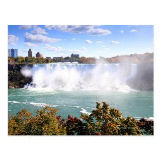 L'Américain tombe aux chutes du Niagara Carte Postale
