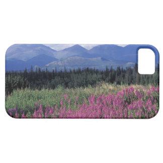 L'Amérique du Nord, Canada, le Yukon. Fleurs de Coques Case-Mate iPhone 5
