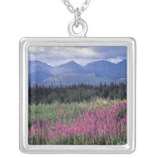 L'Amérique du Nord, Canada, le Yukon. Fleurs de Pendentif Carré