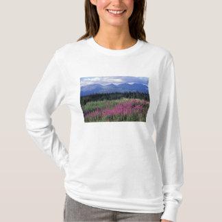 L'Amérique du Nord, Canada, le Yukon. Fleurs de T-shirt