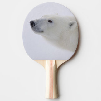 L'Amérique du Nord, Canada, Manitoba, Churchill. 6 Raquette Tennis De Table
