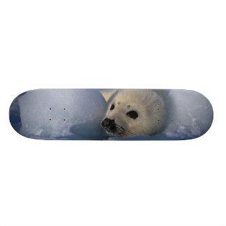 L'Amérique du Nord, Canada, Québec, La 2 d'Iles De Skateboard Customisable