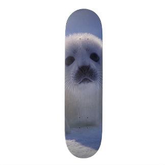 L'Amérique du Nord, Canada, Québec, La d'Iles De Plateaux De Skateboards Customisés