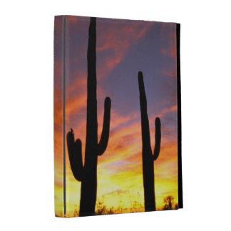L'Amérique du Nord, Etats-Unis, Arizona, désert de Coque iPad