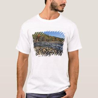 L'Amérique du Nord, USA, NH, plage de pavé d'A sur T-shirt