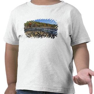 L'Amérique du Nord, USA, NH, plage de pavé d'A sur T-shirts