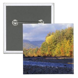 L'Amérique du Nord, USA, NH, rivière de Saco. Pavé Badge