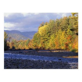 L'Amérique du Nord, USA, NH, rivière de Saco. Pavé Carte Postale