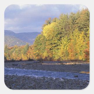 L'Amérique du Nord, USA, NH, rivière de Saco. Pavé Sticker Carré