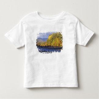 L'Amérique du Nord, USA, NH, rivière de Saco. Pavé T-shirt