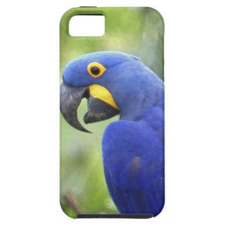 L'Amérique du Sud, Brésil, Pantanal. Mis en danger Coques Case-Mate iPhone 5