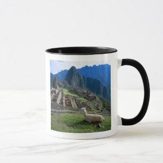 L'Amérique du Sud, Pérou. Un lama se repose sur Mug