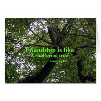 L'amitié est comme une carte de voeux de