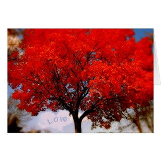 L'amour est dans le ciel… carte de vœux