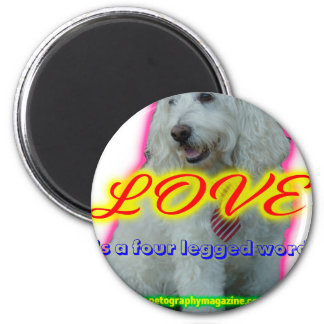 L'amour est un mot quatre à jambes aimant