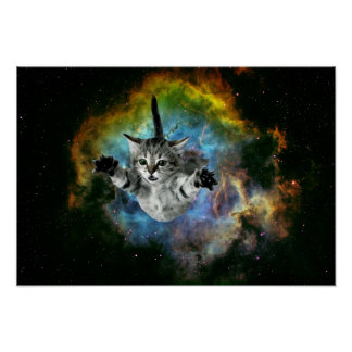 Lancement de chaton d'univers de chat de galaxie posters
