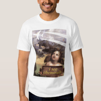 L'ange en Madonna de Foligno voit le T-shirt de
