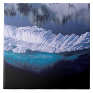 L'Antarctique, baie de paradis. Iceberg dans le cr Grand Carreau Carré