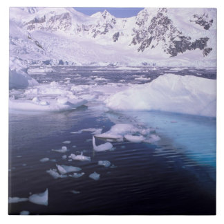 L'Antarctique. Expédition par des icescapes Grand Carreau Carré