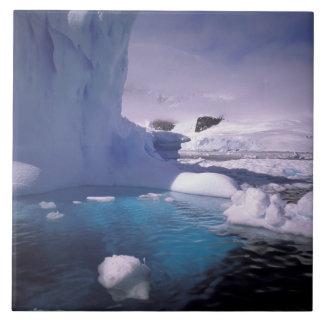 L'Antarctique. Icescapes antarctiques 2 Grand Carreau Carré