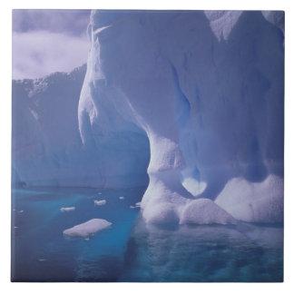 L'Antarctique. Icescapes antarctiques 3 Grand Carreau Carré