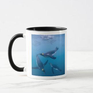 L'Antarctique, île du sud de la Géorgie (R-U), Mug