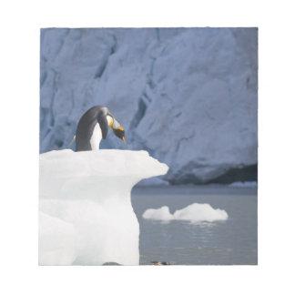 L'Antarctique, île du sud de la Géorgie (R-U), roi Blocs Notes
