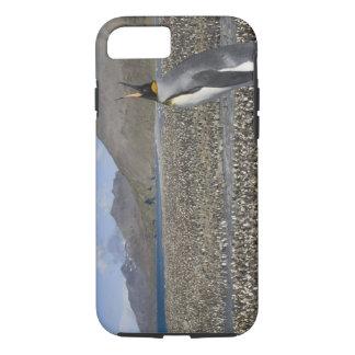 L'Antarctique, île du sud de la Géorgie (R-U), roi Coque iPhone 8/7