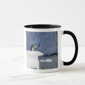 L'Antarctique, île du sud de la Géorgie (R-U), roi Mug